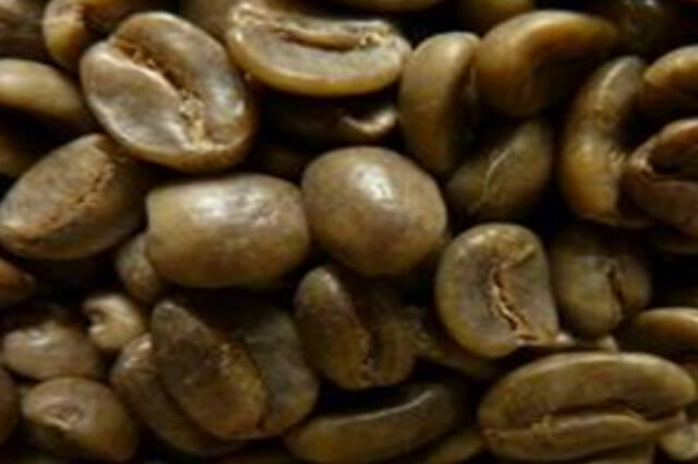 decaffeinating-colombia-green-beans